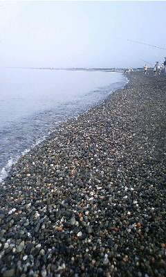 ぶらり駿河湾